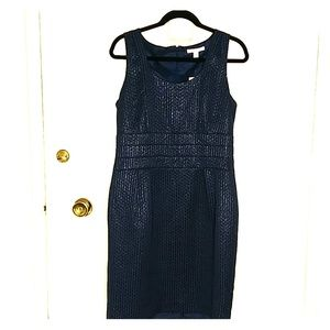 Banana Republic fitted blue dress - NWT